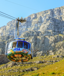 Cape Town Guided Day Tours by Springbok Atlas Tours & Safaris