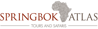 Springbok Atlas Tours & Safaris